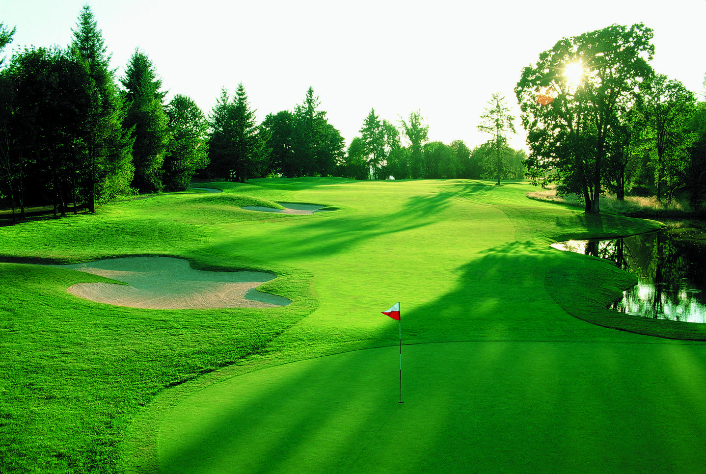 best golf vacation packages - pic of a golf green